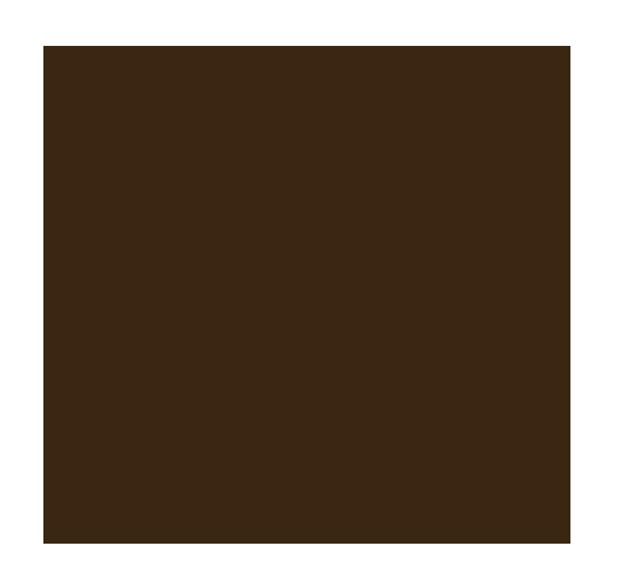 Hayat Bornéo